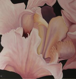 Iris von RUDIN Richarda