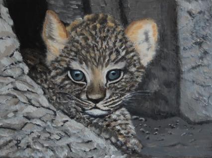 Junger Leopard von RUDIN Richarda