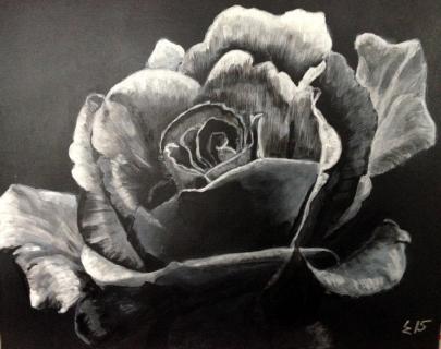 Schwarze Rose von ZEHNER Lisa
